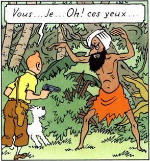Tintin vs Fakir
