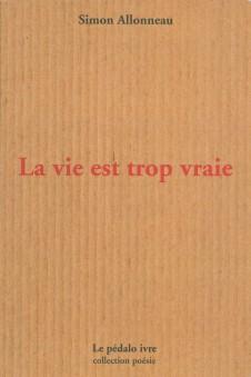 Simon-Allonneau-La-vie-est-trop-vraie-nov-2014